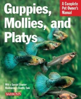 Guppies, Mollies, and Platys Everything about Purchase, Care