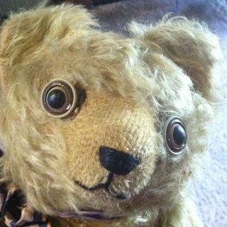Plush American Teddy Bear 1920s Glass Moving Googly Eyes 14 VGC