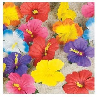 , Cards & Party Supply  Party Supplies  Luau & Beach Parties