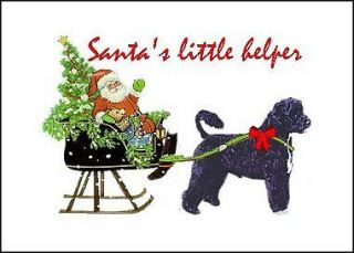 Portuguese Water Dog Christmas cards seal address label