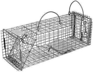 Humane Live Trap Chipmunk Rat Gopher Size with Easy Release Door 16x5