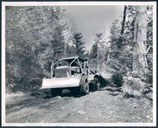 Log Hauling Heavy Equipment Vehicle Timber Production News Photo