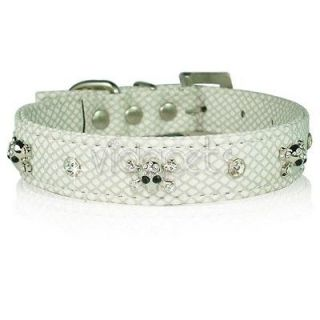 white leather dog collar in Leather Collars