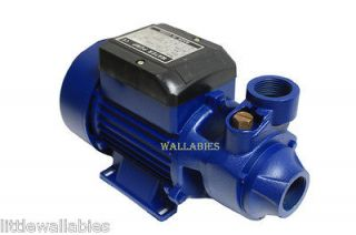 BIODIESEL 1/2 HP ELECTRIC WATER PUMP POOL FARM POND Centrifugal