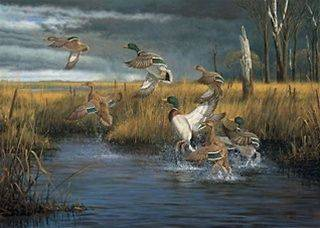 50012 Fowl Weather Duck 513 Pc Puzzle By Artist Hayden Lambson W/Free