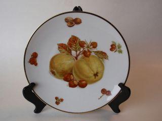 Bavaria Germany Debra Fine China Fruit Plate Pear Hazelnuts