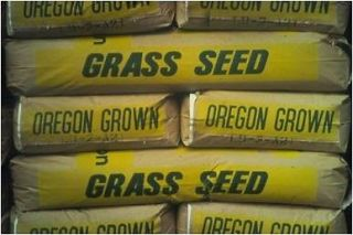 90% Kentucky Bluegrass 10% Perennial Rye Grass Lawn Turf Seed 5 lb bag