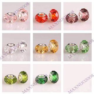 5pcs Crystal Murano Lampwork Glass European Beads Charm Bracelets PG