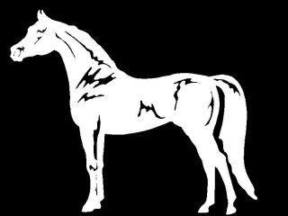 Horse equestrian trailer vinyl car truck window decal sticker graphic