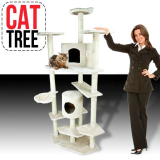 cat scratching post in Cat Supplies