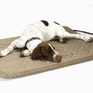 outdoor heated dog bed in Beds