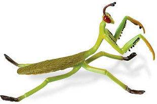 Newly listed Praying Mantis Christmas Tree Ornament New insect bug