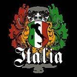 Italia Crest Flag Italy Flag Italian Ethnic Pride Tee Shirt T shirt