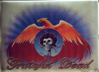 Grateful Dead 20x28 Skull and Roses Pheonix Poster 1981