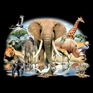 Wildlife T Shirt African Oasis Wild Life Scene Elephant Monkey Giraffe