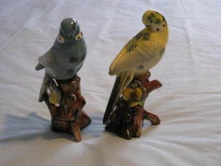 PAIR OF PARAKEET BIRDS YELLOW & BLUE VINTAGE BEAUTIFUL LOVE BIRDS? L