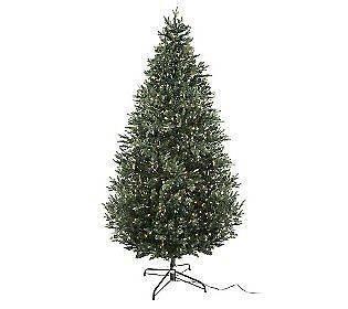 Bethlehem Lights 6.5 Noble Fir Instant Power Pre Lit Christmas Tree