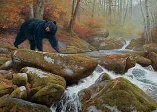 51503 Stepping Stones Bear 1000 Pc Puzzle, Artist Hayden Lambson Free