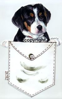 Collectibles  Animals  Dogs  Greater Swiss Mountain Dog