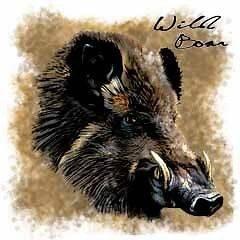 Boar T Shirt Wild Boar Profile Shirt Hog Tee Large Orange