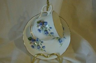 Crown Staffordshire Bone China Blue Violets Floral Cup And Saucer Set