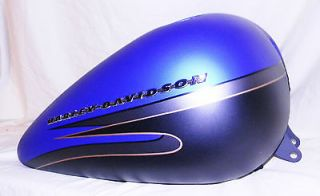 DAVIDSON CUSTOM PAINT SET BLUE BLACK DIVIDE # 2 OF 200 FATBOY FLSTF