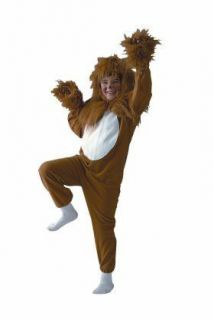 ECONOMY Lion Costume for Child Size Small (4 6)