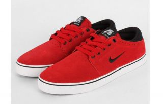 Nike SB Team Edition Shoes 487597 601 Mens All Sizes