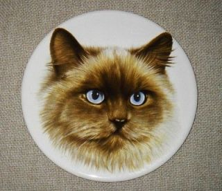 Vtg Hot Plate Cats Kitten Persian Blue Eyes Pans Wall Hanging #507 U.S
