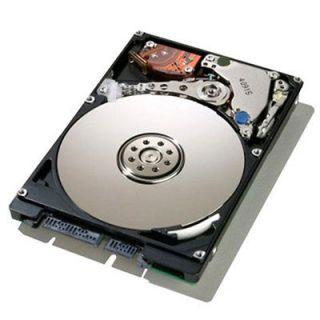 500 gb laptop sata hard drive in Internal Hard Disk Drives