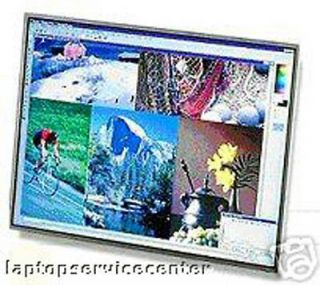 dell inspiron e1505 screen in Laptop Screens & LCD Panels