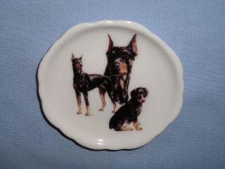 Doberman Pinscher Dog Magnet Fired Decal Porcelain E 3