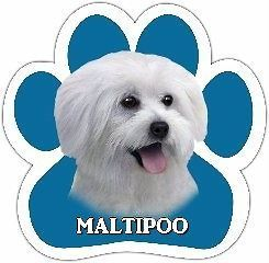 Maltipoo Mixed Breed Dog Paw Vinyl Car UV Coated Magnet 13125 124 Use