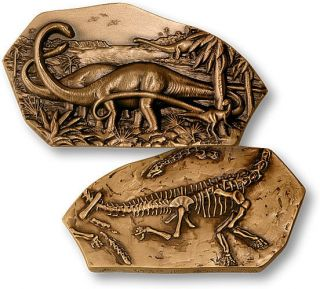 DIPLODOCUS DINOSAUR FOSSIL IN BOX SOCIETY OF MEDALISTS CHALLENGE COIN