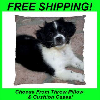 Border Collie Puppy Dog  Throw Pillow Case or Cushion Case/Cover