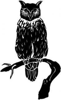 owl large vinyl decal car truck window sticker time left