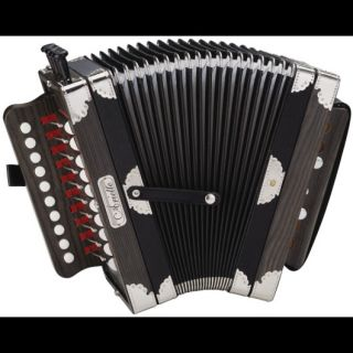 3002B CAJUN / FOLK DARK WOOD ARIETTE KEY OF C ACCORDION w CASE + BOOK