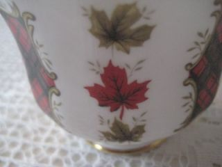 Royal Adderley Fine Bone China Cup Saucer Maple Leaf