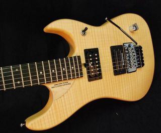 Washburn N24 Import N4 Nuno Bettencourt Guitar Exclusiv