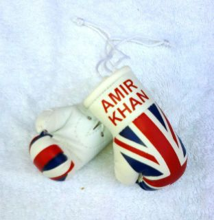 Amir Khan United Kingdom Union Flag Boxing Gloves