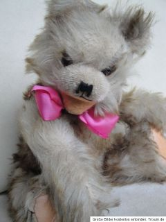 ANTIQUE ANKER TEDDY BEAR 1950s   RARE COLLECTOR`S BEAR w. GROWLER 5