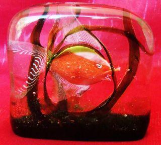 RARE Aquarium Tropical Fish Paperweight Vetreria Aureliano Toso Murano