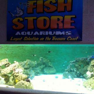 6000GALL Shark Tank Aquaculture Tank