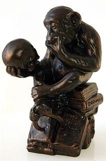 Monkey Primate Skull Darwin Sculpture Figurine Statue