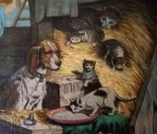 Antique 19 Century Chromolithograph Print Dogs Cats Chicken Walnut