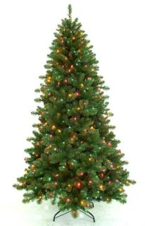 Pre Lit Aster Pine Artificial Christmas Tree Multi Colored Lights 6 5