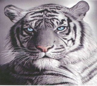 Blue Eyes White Tiger Polar Fleece Throw Rug Blanket