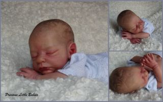 Precious Little Babies Reborn Newborn Baby Boy from Brayden by Nicole