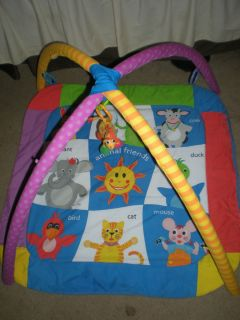 Baby Einstein Animal Friends Discover & Play Gym