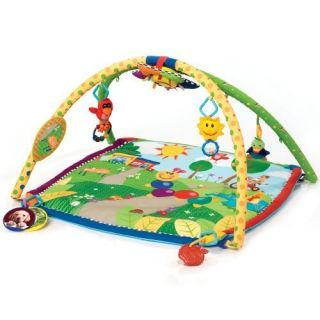 Baby Einstein Caterpillar and Friends Play Gym